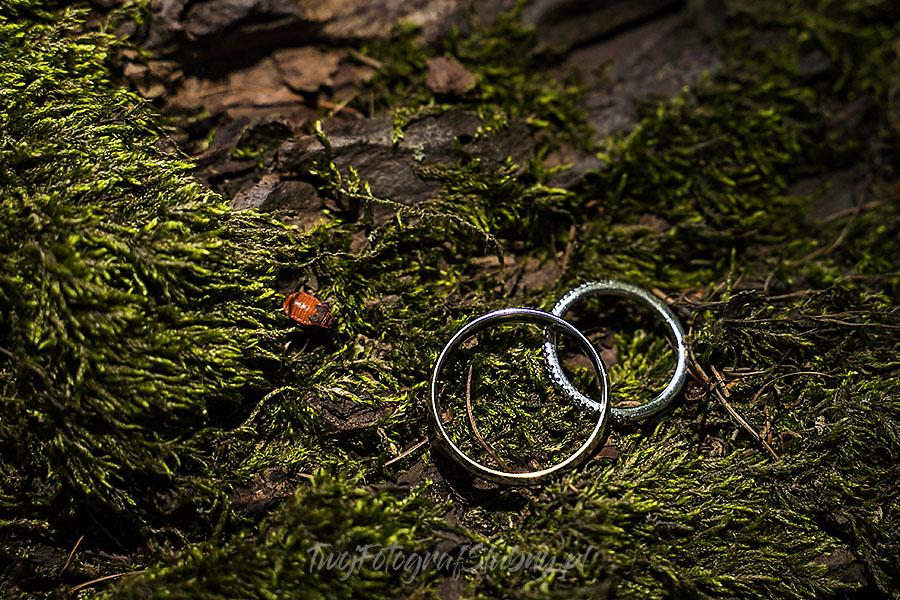 wesele w palacu smoszewo WF 0200